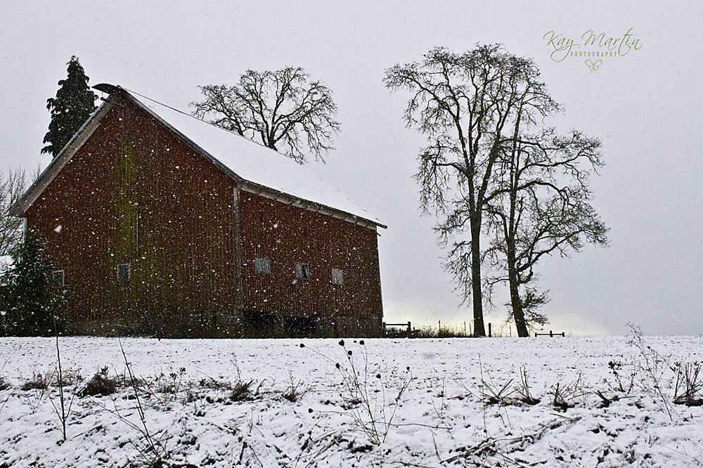 photoblog image Red Barn in Winter