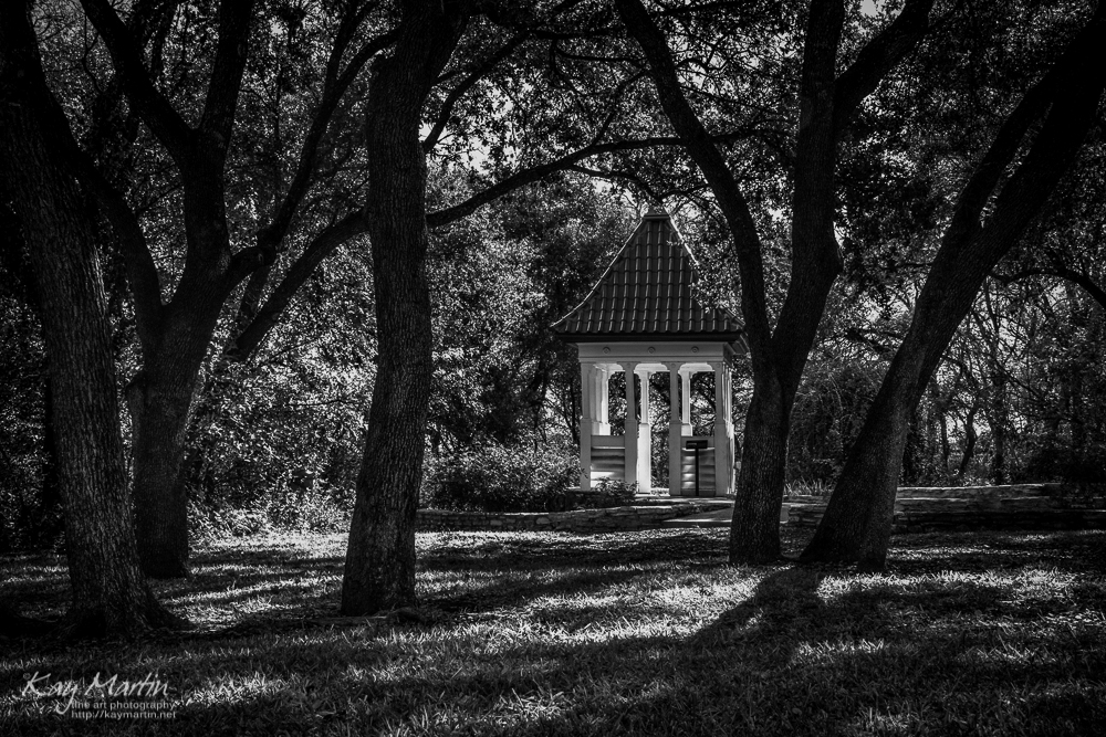 photoblog image A glimpse of Texas at Zilker Botanical Garden, Austin